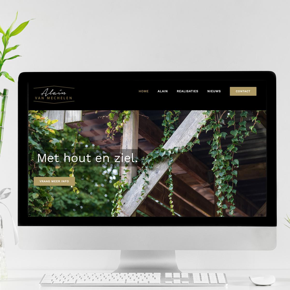 website Alain Van Mechelen