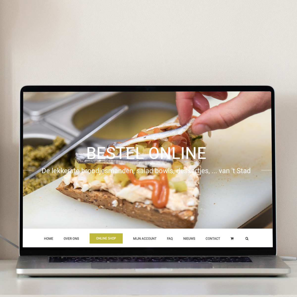 webshop ontwerp Berros